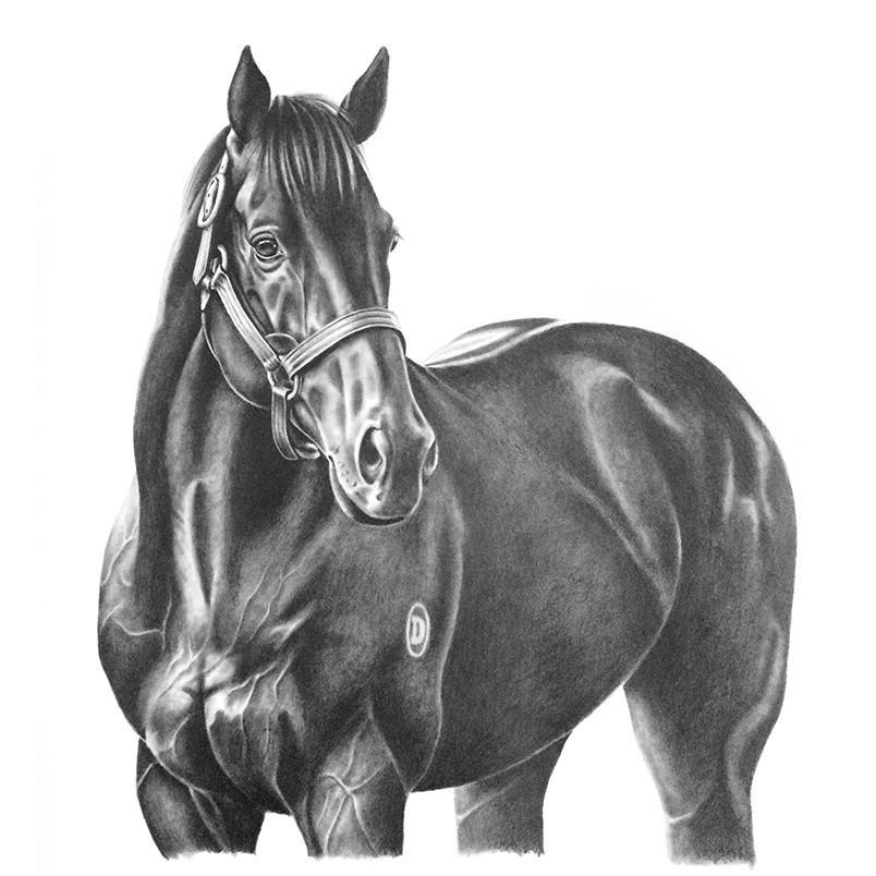commission13